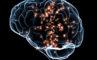 Что такое лейкоареоз головного мозга и какие симптомы заболевания?