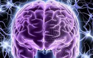 Что такое дисциркуляторная энцефалопатия и как ее лечить?