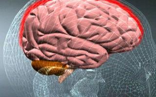 Первые признаки и симптомы менингита у взрослых