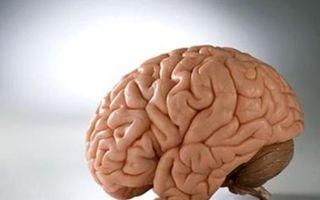 Симптомы дисциркуляторной, посттравматической, резидуальной и алкогольной энцефалопатии