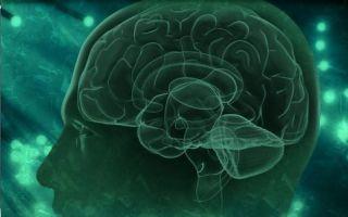 Симптомы и лечение гипертензионно-гидроцефального синдрома у детей и взрослых