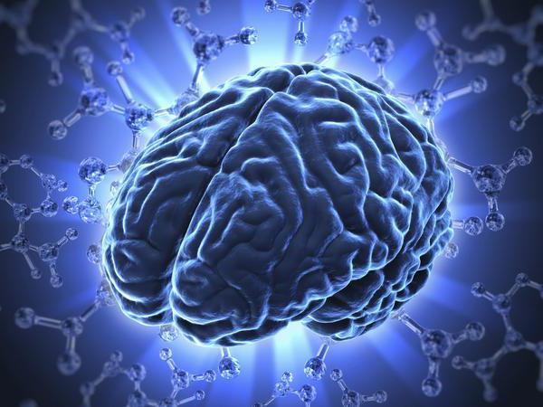 Мозг синего цвета