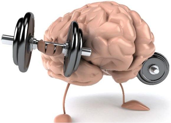Мозг и штанга
