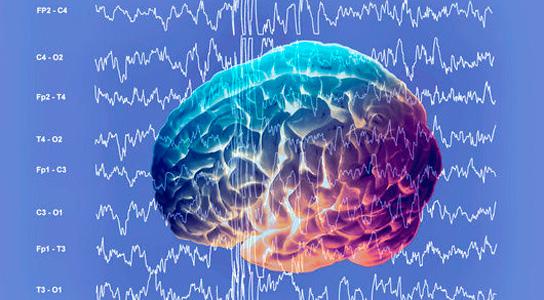 Пульс и мозг