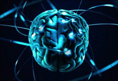Мозг и полосы