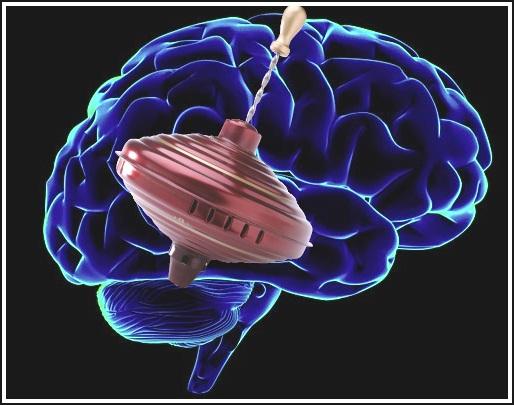 Мозг и юла