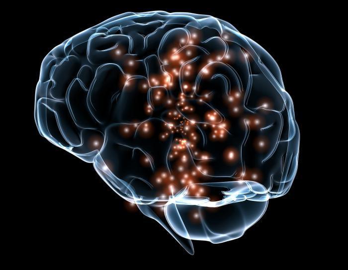 Мозг и огоньки