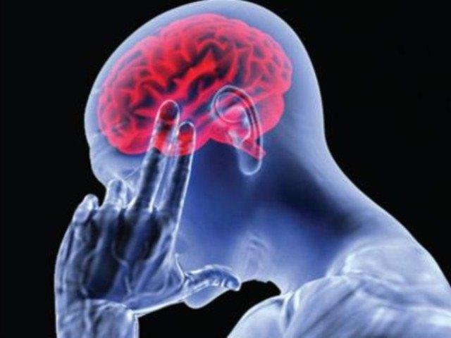 Мозг в голове человека