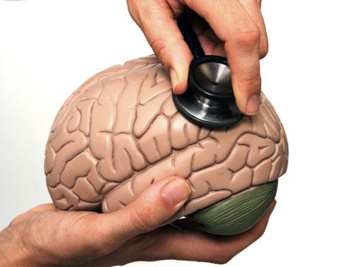 Пластмассовый мозг