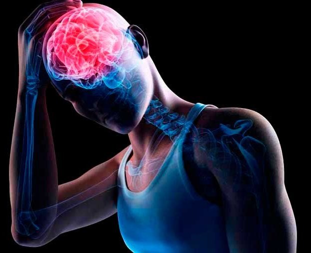 Человек и мозг