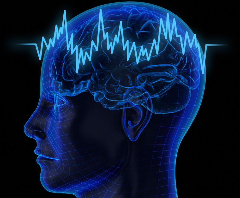 Мозг и пульс
